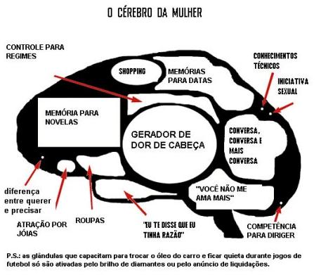 O cérebro da mulher. Imagem encontrada na internet